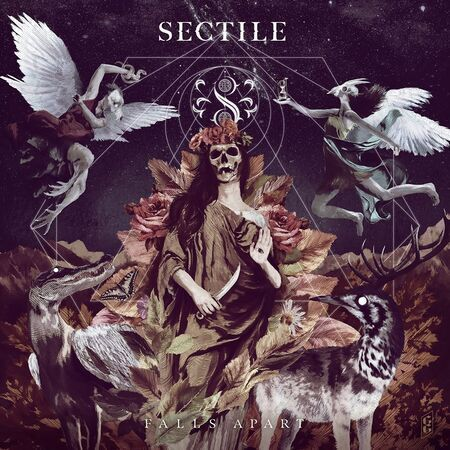 Sectile 20